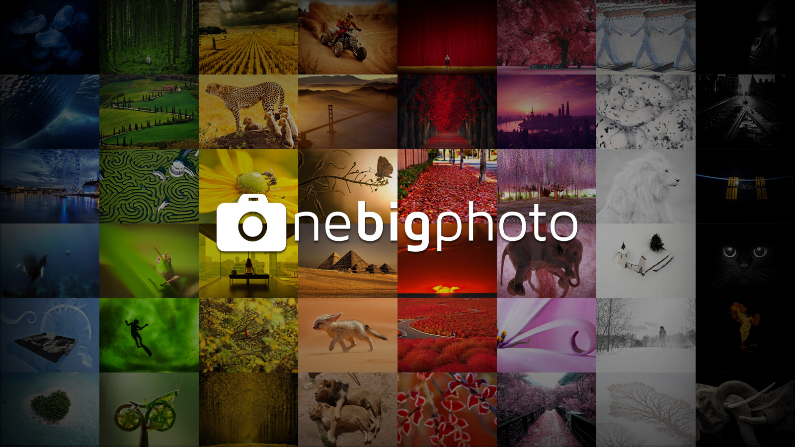 one big photo wallpaper for free download | one big photo